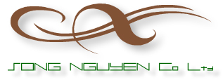 SONG NGUYEN CO LTD